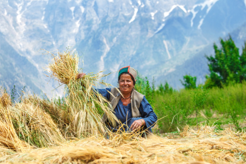 Agricoltura_tradizionale