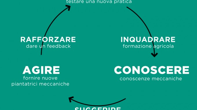Adherence Loop 1