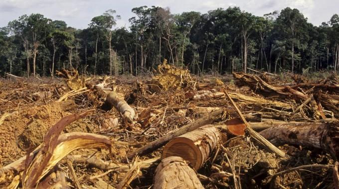 Deforestazione Dell'Amazzonia. Credits Class Meteo