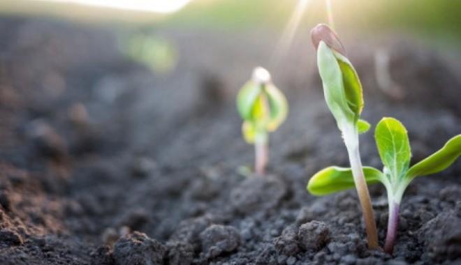 """Ambiente, Agricoltura E Alimentazione: Workshop """"Territorio E Nuove Forme Di Legalità"""""""