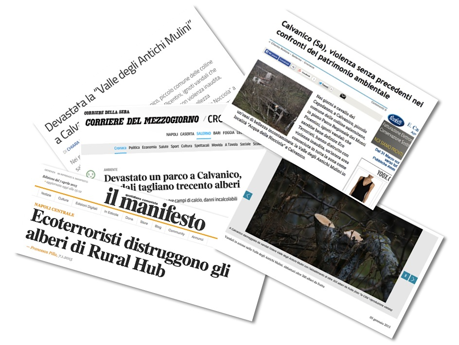 valle_mulini_ecoterrorismo