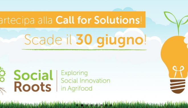 Innovazione Sociale Nel Settore Agroalimentare – #CallForSolutions Di Social Roots