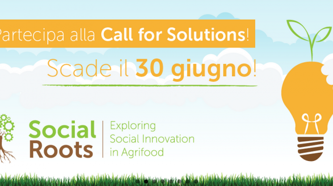 Social Roots Call For Solutions