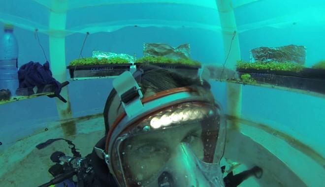 L'orto Di Nemo, Agricoltura Tech Sotto Il Mare
