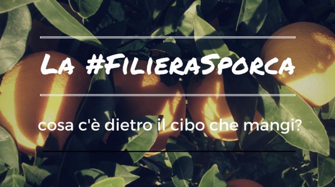 La #FilieraSporca