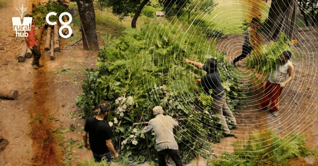 CATUOZZO 2016 BIOHACKING LAB